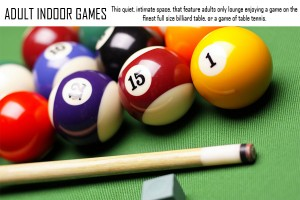 ADULT INDOOR GAMES
